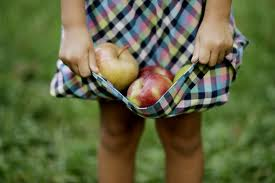 applepicking5